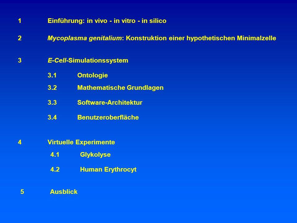 1 Einführung: in vivo - in vitro - in silico