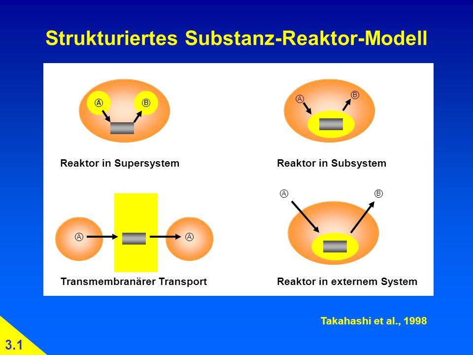 Strukturiertes Substanz-Reaktor-Modell