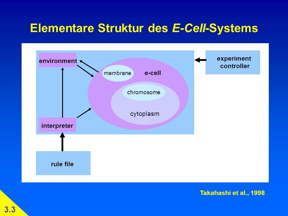 Elementare Struktur des E-Cell-Systems