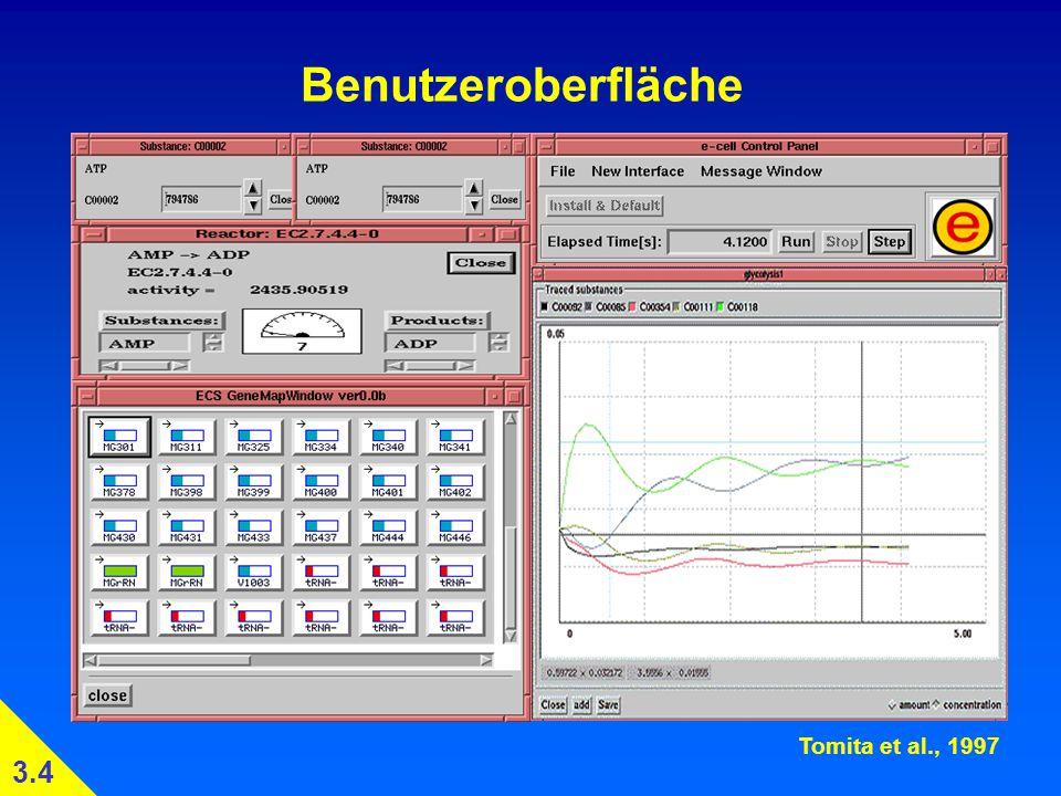 Benutzeroberfläche 3.4 Tomita et al., 1997