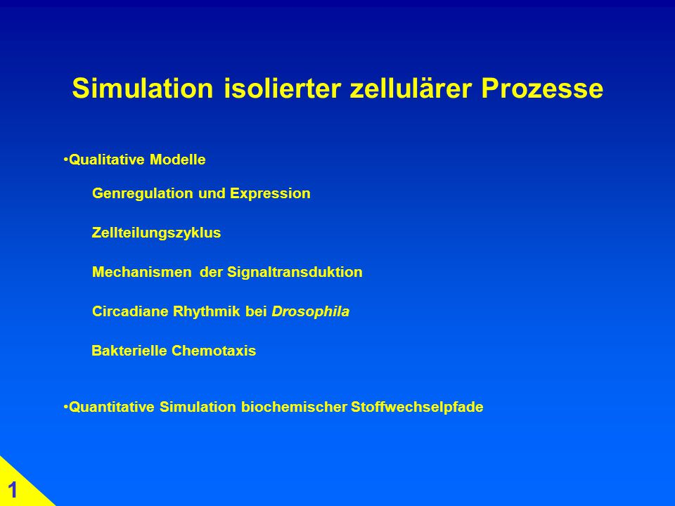 Simulation isolierter zellulärer Prozesse