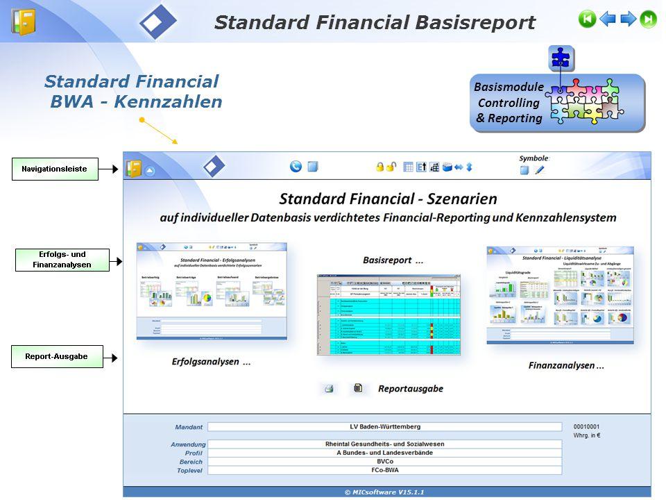 Standard Financial Basisreport Basismodule Controlling