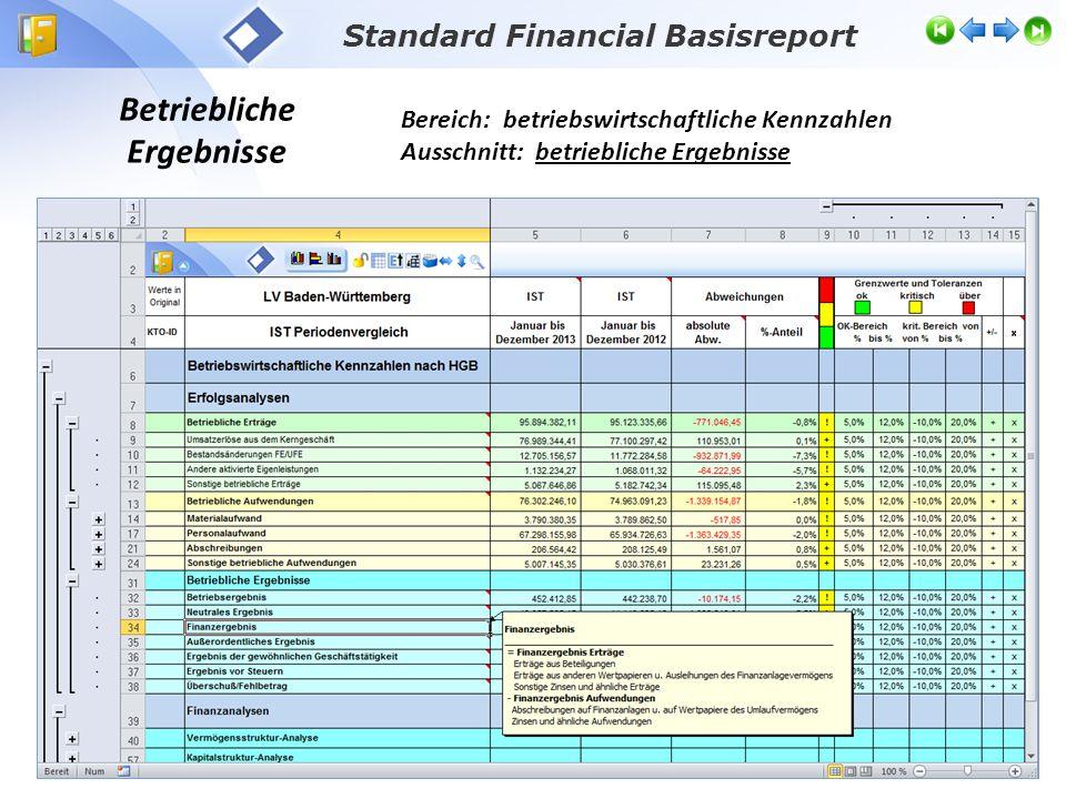 Standard Financial Basisreport Betriebliche Ergebnisse