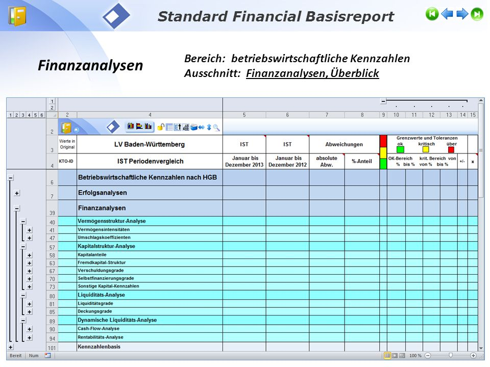 Standard Financial Basisreport
