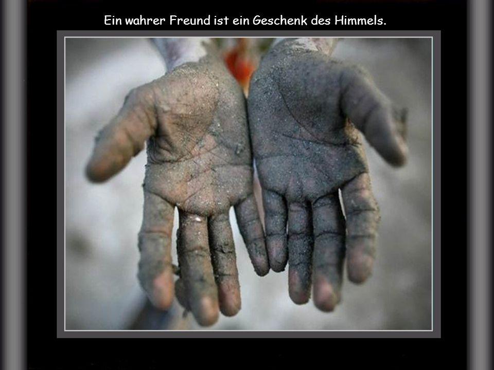 Ein wahrer Freund ist ein Geschenk des Himmels.