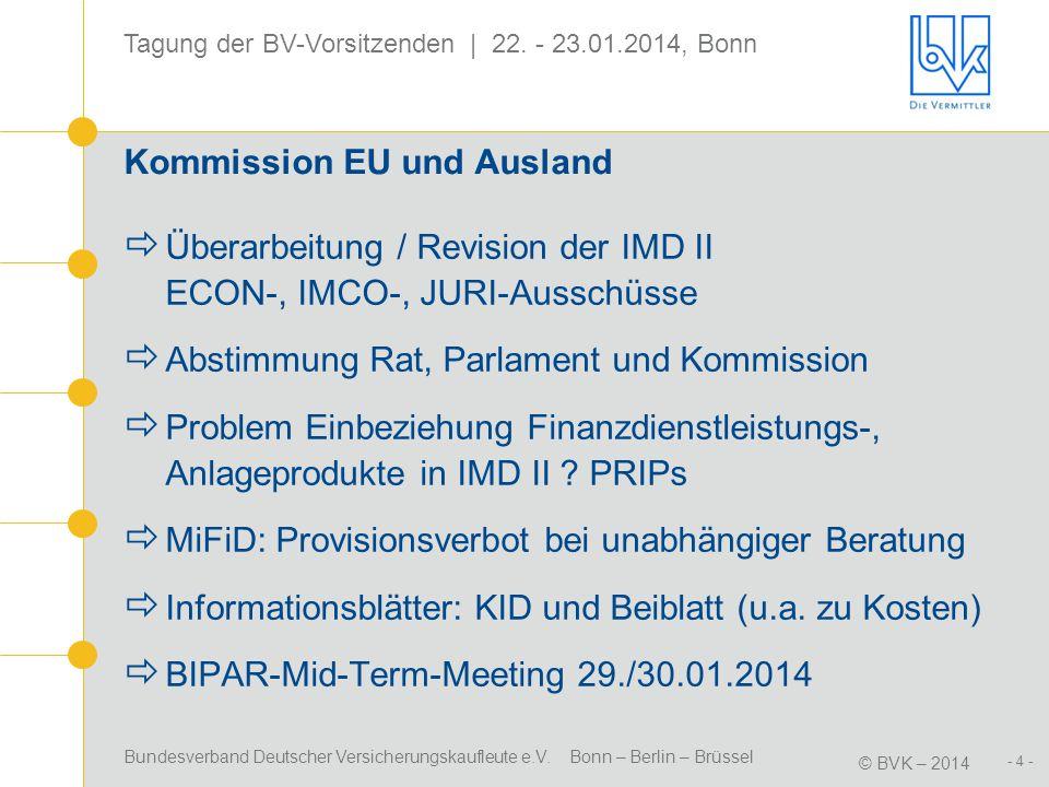 Kommission EU und Ausland