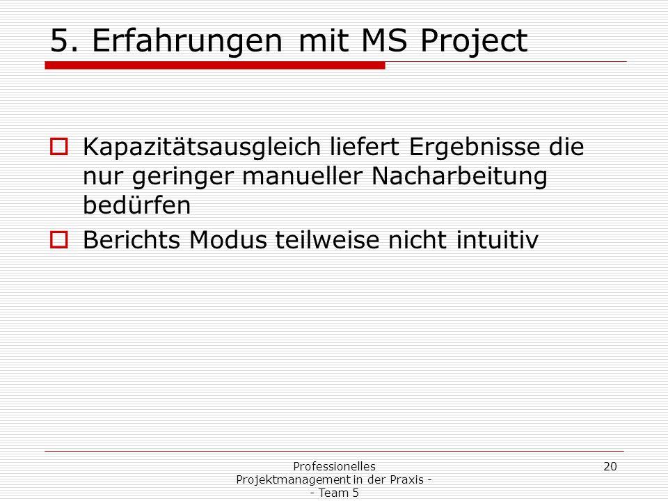 5. Erfahrungen mit MS Project