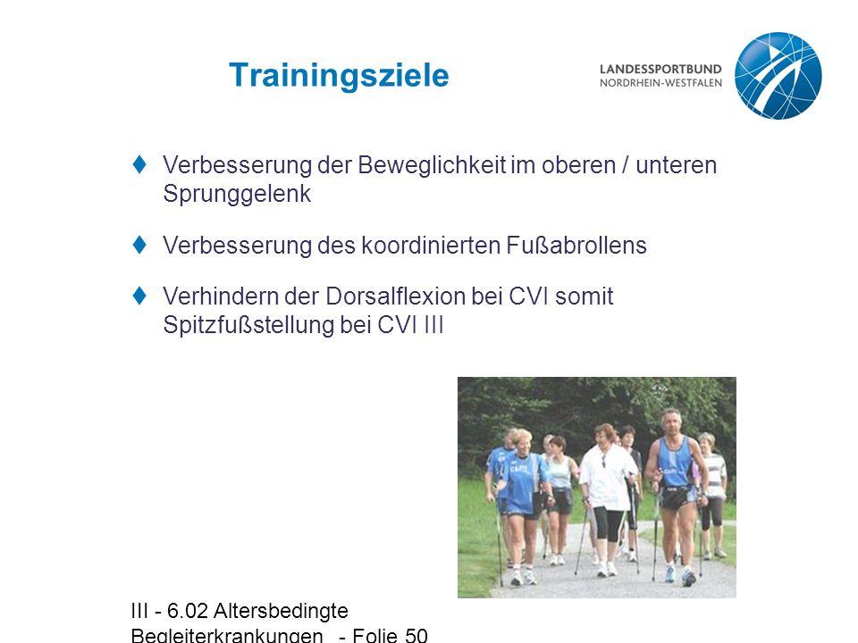 Trainingsziele Verbesserung der Beweglichkeit im oberen / unteren Sprunggelenk. Verbesserung des koordinierten Fußabrollens.