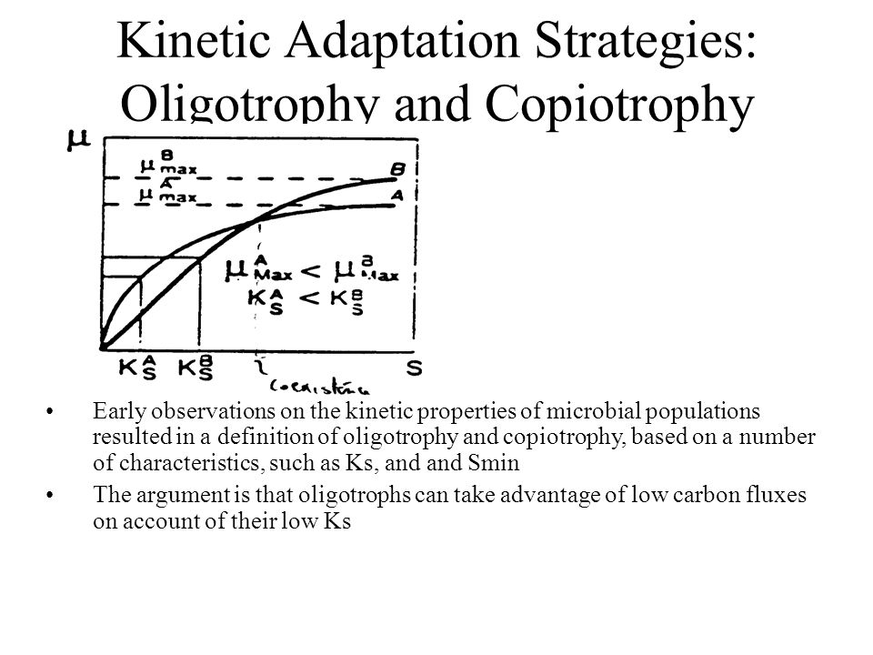 Kinetic Adaptation Strategies: Oligotrophy and Copiotrophy