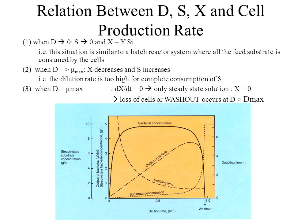 Relation Between D, S, X and Cell Production Rate