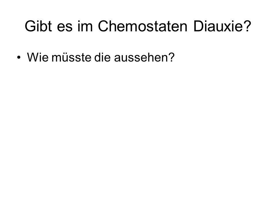 Gibt es im Chemostaten Diauxie