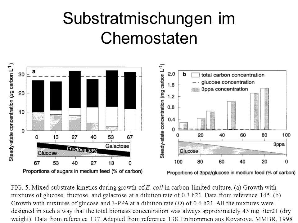 Substratmischungen im Chemostaten