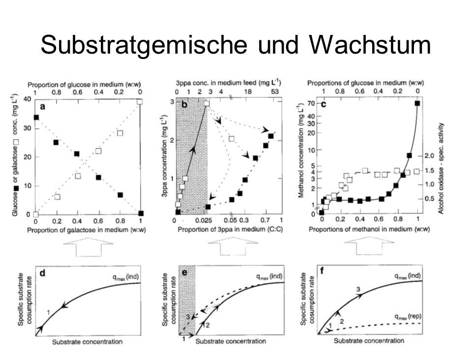 Substratgemische und Wachstum