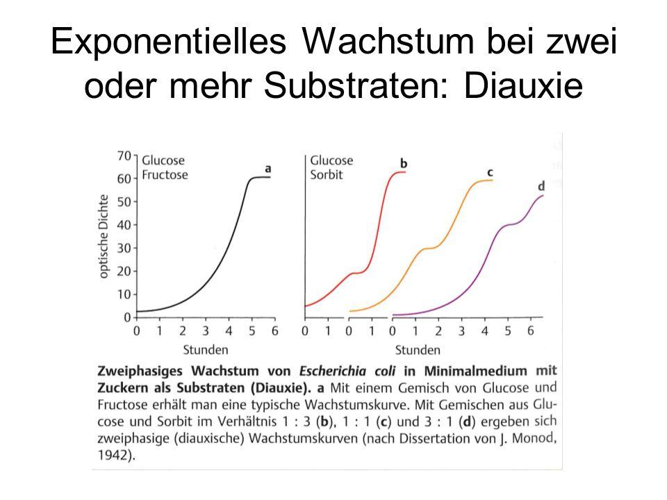 Exponentielles Wachstum bei zwei oder mehr Substraten: Diauxie