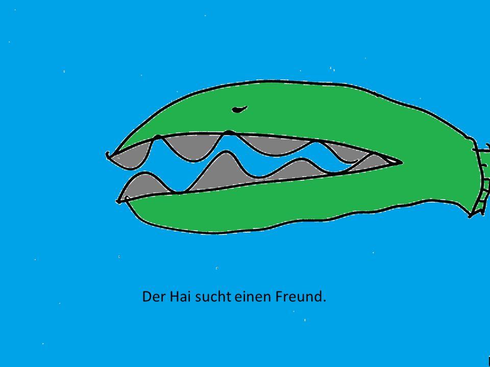 Der Hai sucht einen Freund.