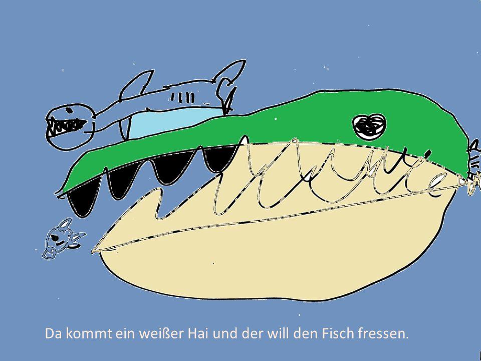 Da kommt ein weißer Hai und der will den Fisch fressen.