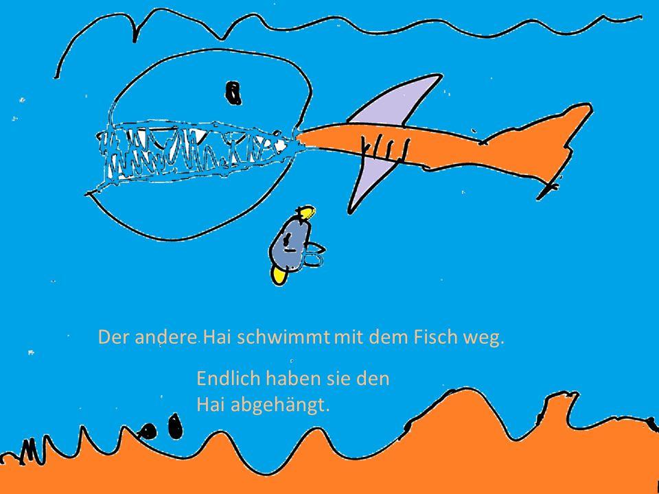 Der andere Hai schwimmt mit dem Fisch weg.