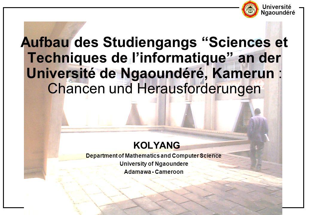 Aufbau des Studiengangs Sciences et Techniques de l'informatique an der Université de Ngaoundéré, Kamerun : Chancen und Herausforderungen