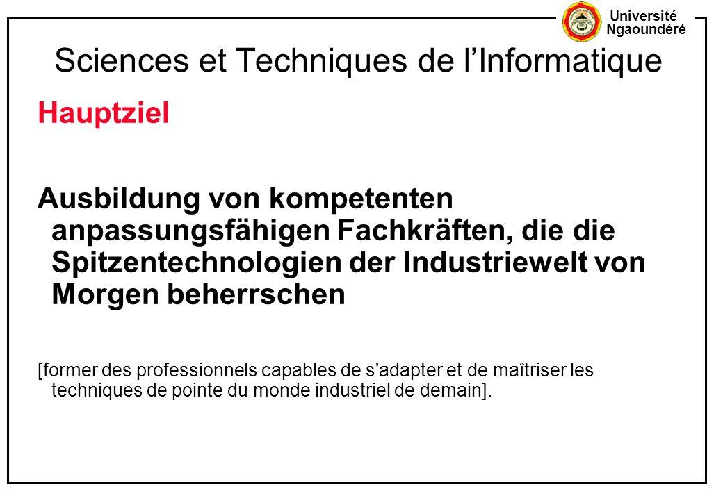 Sciences et Techniques de l'Informatique