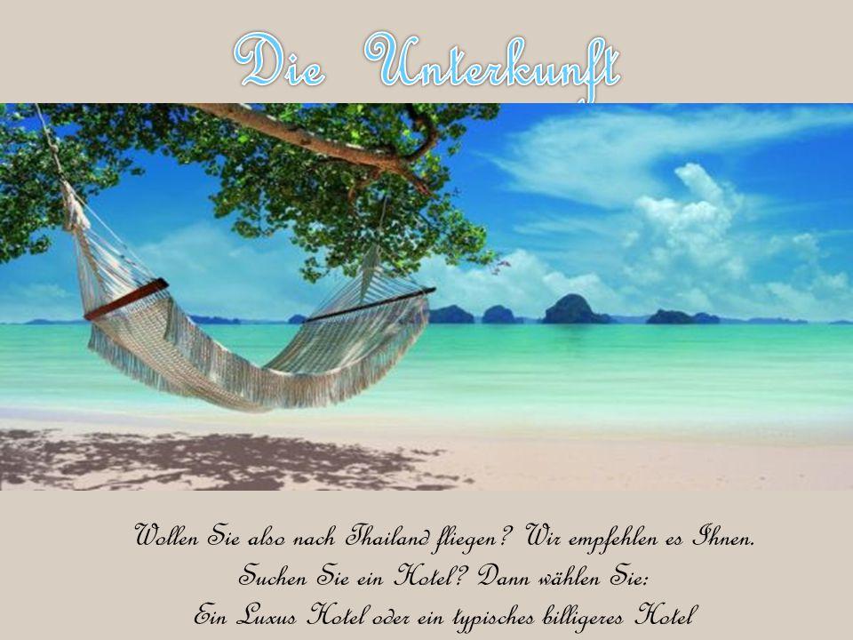 Die Unterkunft Wollen Sie also nach Thailand fliegen Wir empfehlen es Ihnen. Suchen Sie ein Hotel Dann wählen Sie: