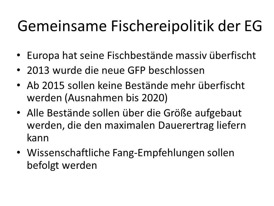 Gemeinsame Fischereipolitik der EG