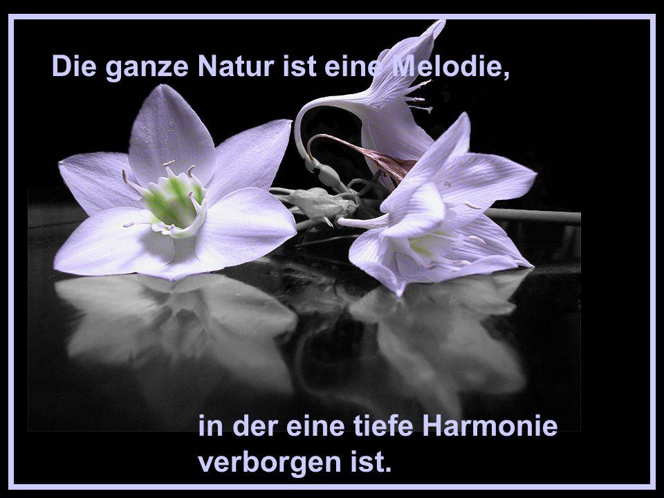Die ganze Natur ist eine Melodie,