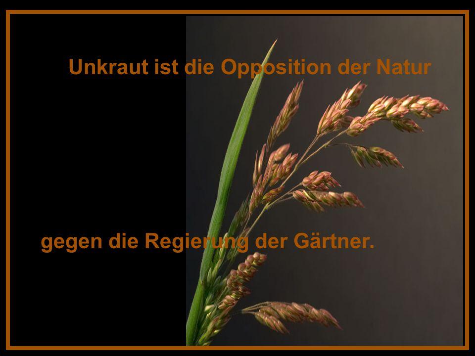 Unkraut ist die Opposition der Natur