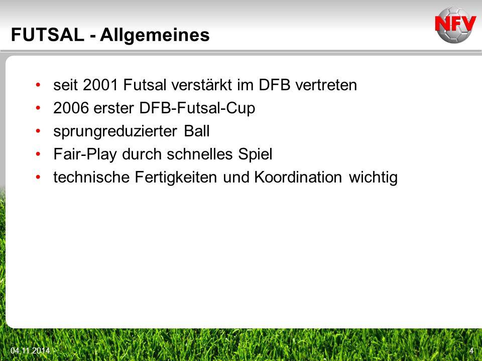 FUTSAL - Allgemeines seit 2001 Futsal verstärkt im DFB vertreten