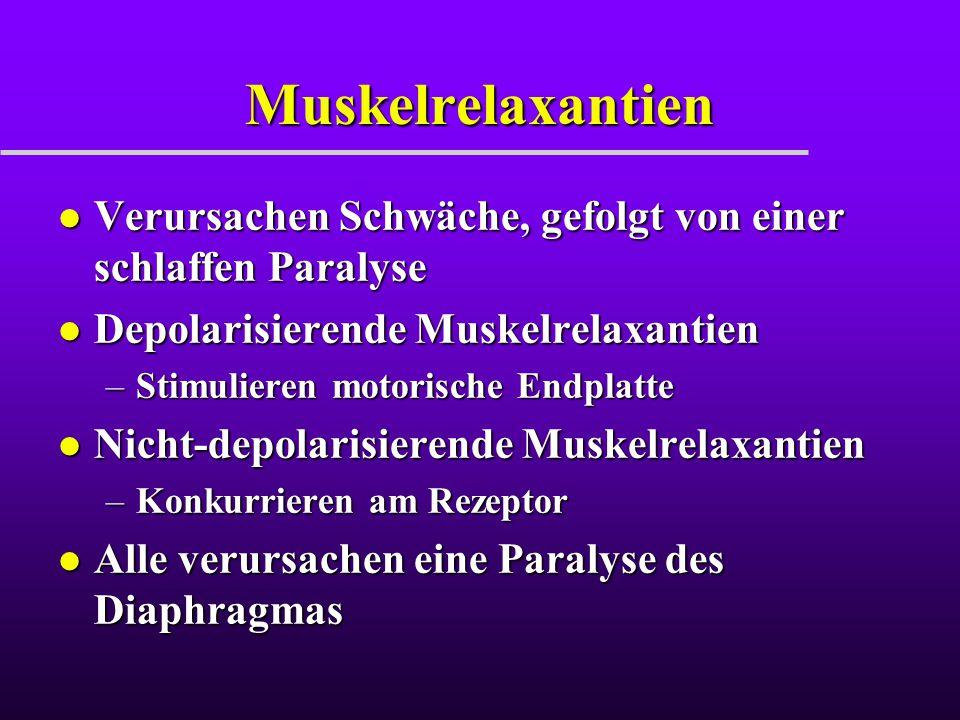 Muskelrelaxantien Verursachen Schwäche, gefolgt von einer schlaffen Paralyse. Depolarisierende Muskelrelaxantien.