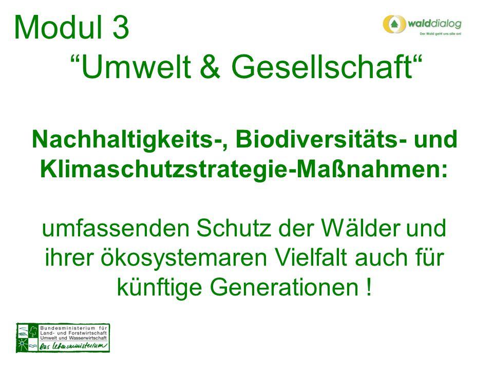 Nachhaltigkeits-, Biodiversitäts- und Klimaschutzstrategie-Maßnahmen: