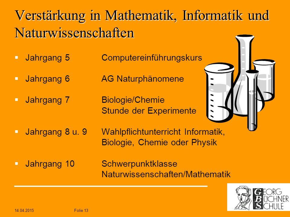 Verstärkung in Mathematik, Informatik und Naturwissenschaften