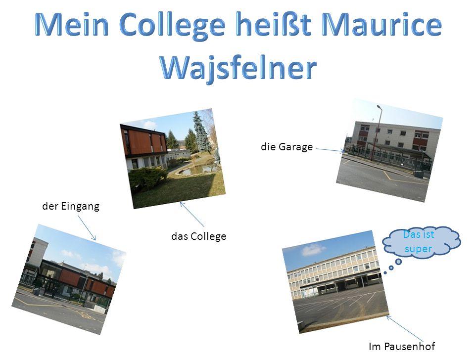 Mein College heißt Maurice Wajsfelner