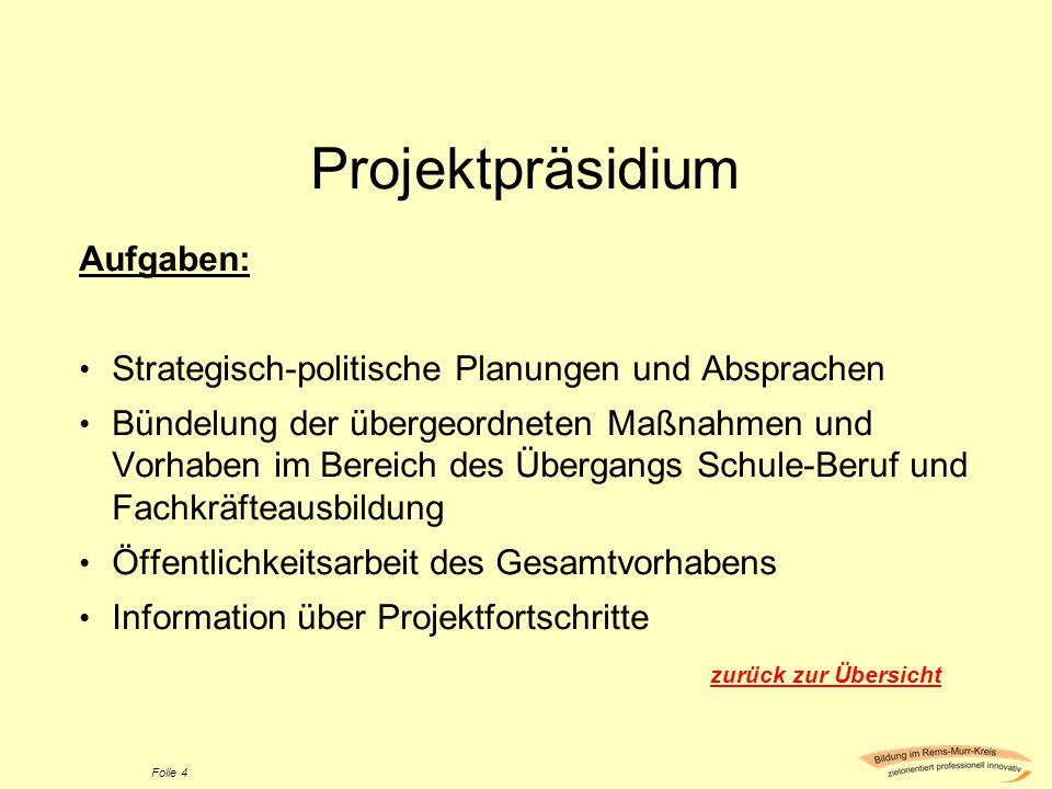 Projektpräsidium Aufgaben: