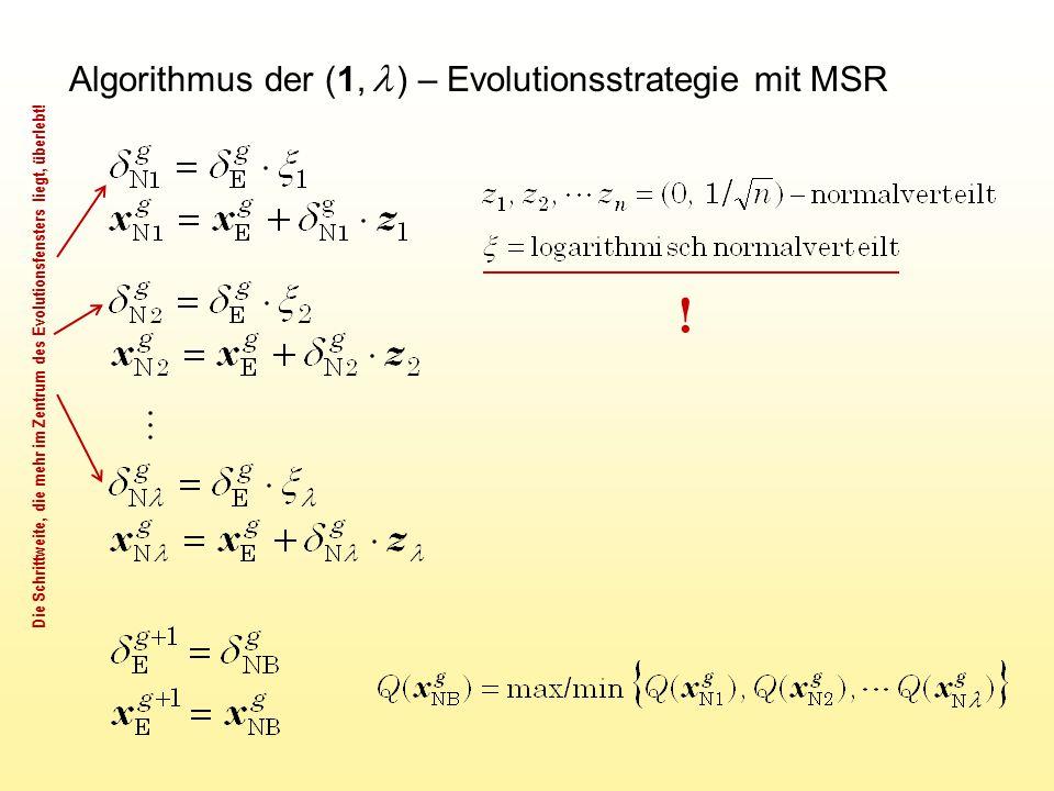 ! Algorithmus der (1, l ) – Evolutionsstrategie mit MSR