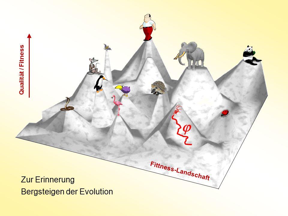  Zur Erinnerung Bergsteigen der Evolution Qualität / Fitness