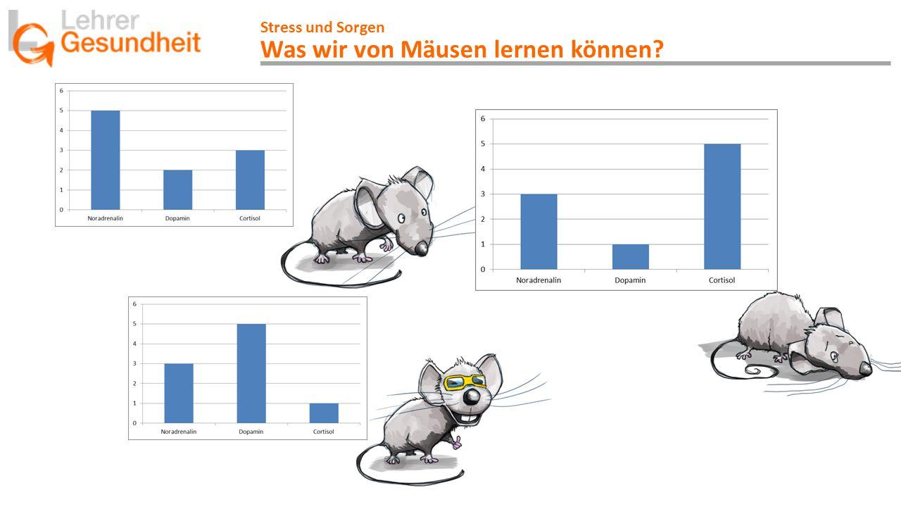 Was wir von Mäusen lernen können
