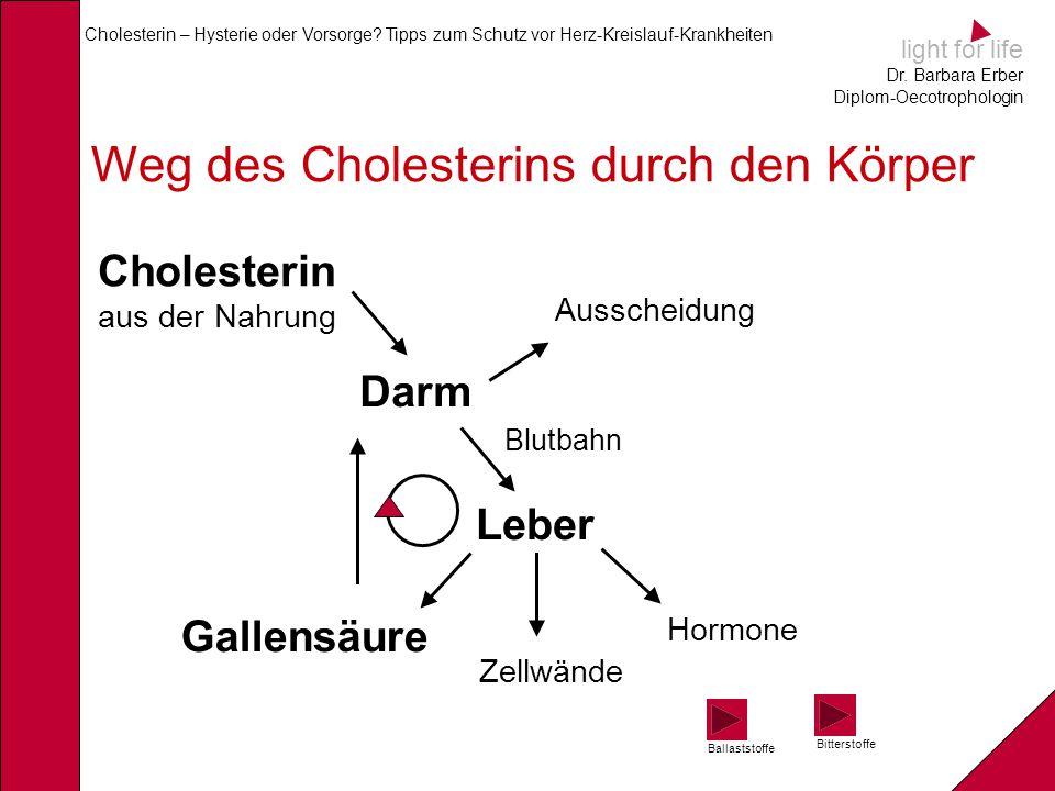 Weg des Cholesterins durch den Körper
