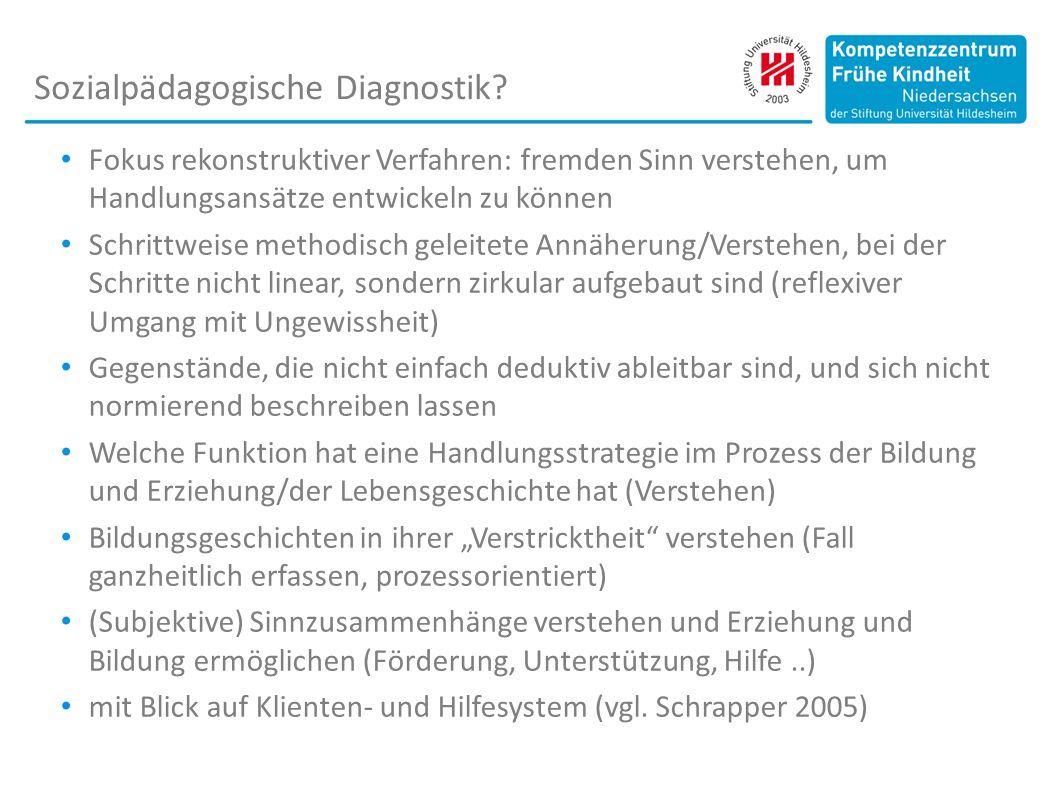 Sozialpädagogische Diagnostik