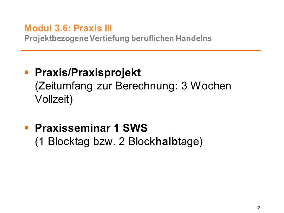 Modul 3.6: Praxis III Projektbezogene Vertiefung beruflichen Handelns