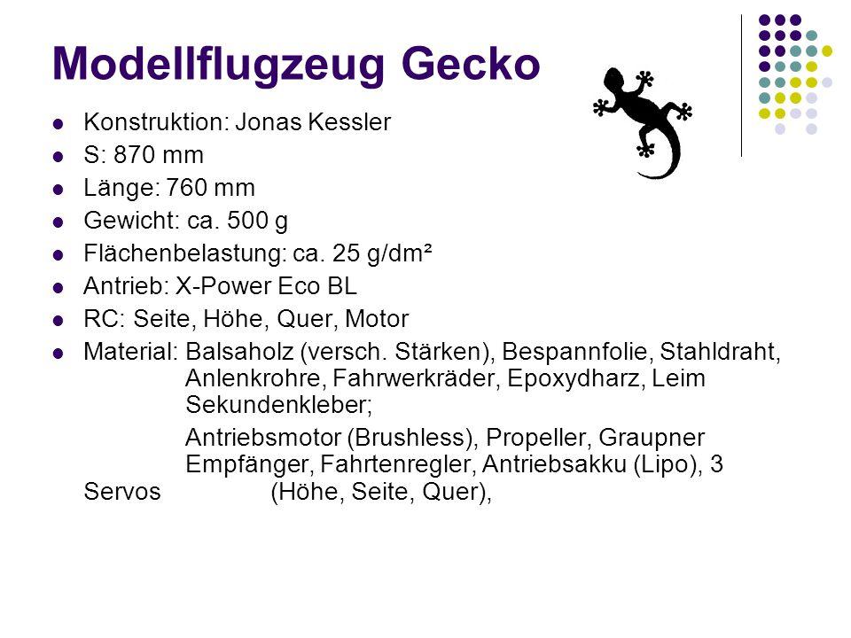 Modellflugzeug Gecko Konstruktion: Jonas Kessler S: 870 mm