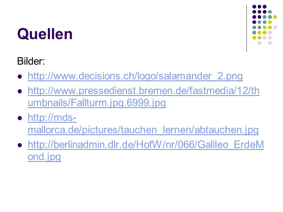 Quellen Bilder: http://www.decisions.ch/logo/salamander_2.png
