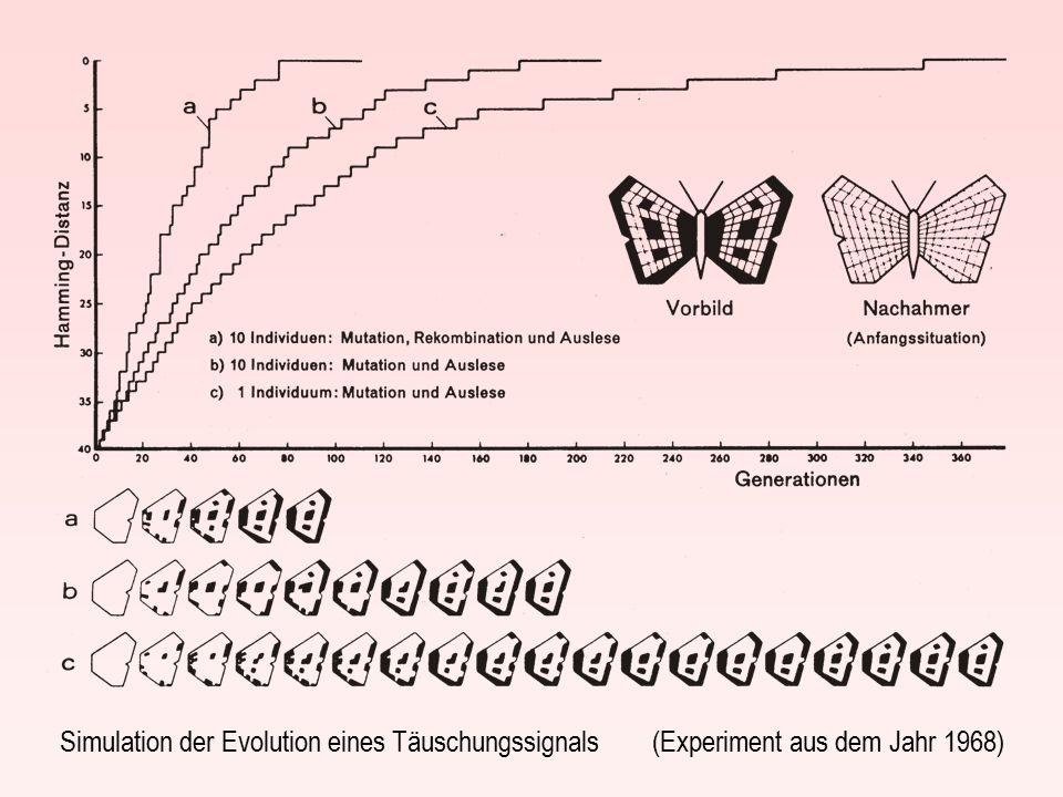 Simulation der Evolution eines Täuschungssignals (Experiment aus dem Jahr 1968)