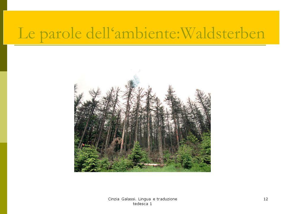 Le parole dell'ambiente:Waldsterben