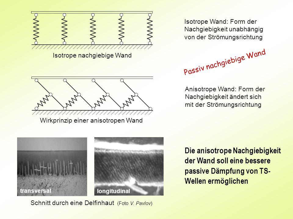 Isotrope Wand: Form der Nachgiebigkeit unabhängig von der Strömungsrichtung