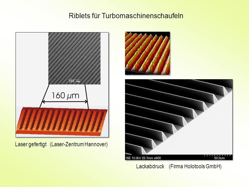 Riblets für Turbomaschinenschaufeln