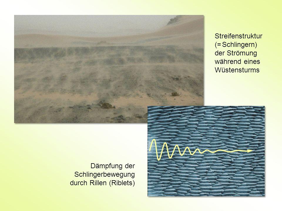 Streifenstruktur (= Schlingern) der Strömung während eines Wüstensturms
