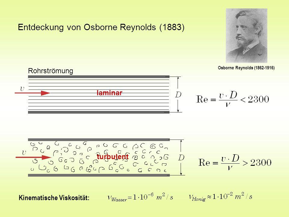 Entdeckung von Osborne Reynolds (1883)