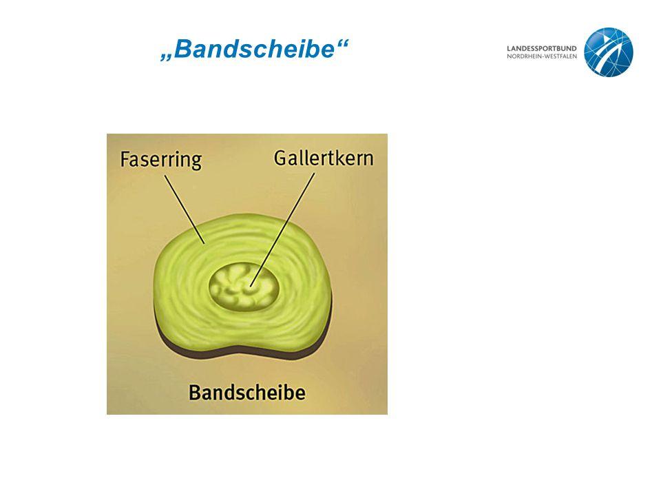 """""""Bandscheibe"""