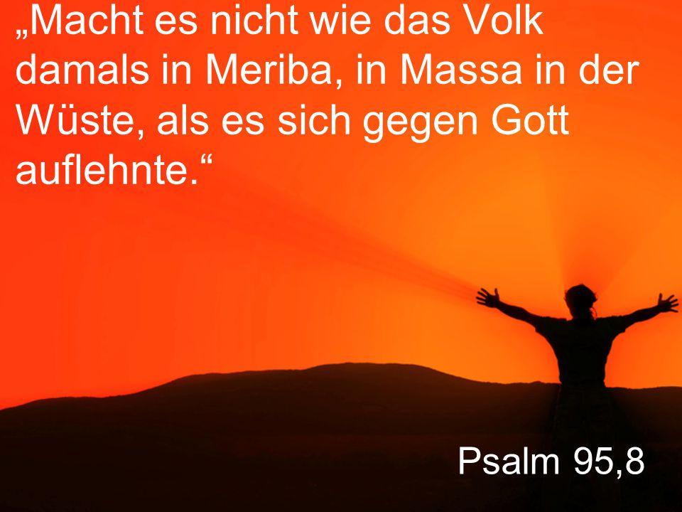 """""""Macht es nicht wie das Volk damals in Meriba, in Massa in der Wüste, als es sich gegen Gott auflehnte."""