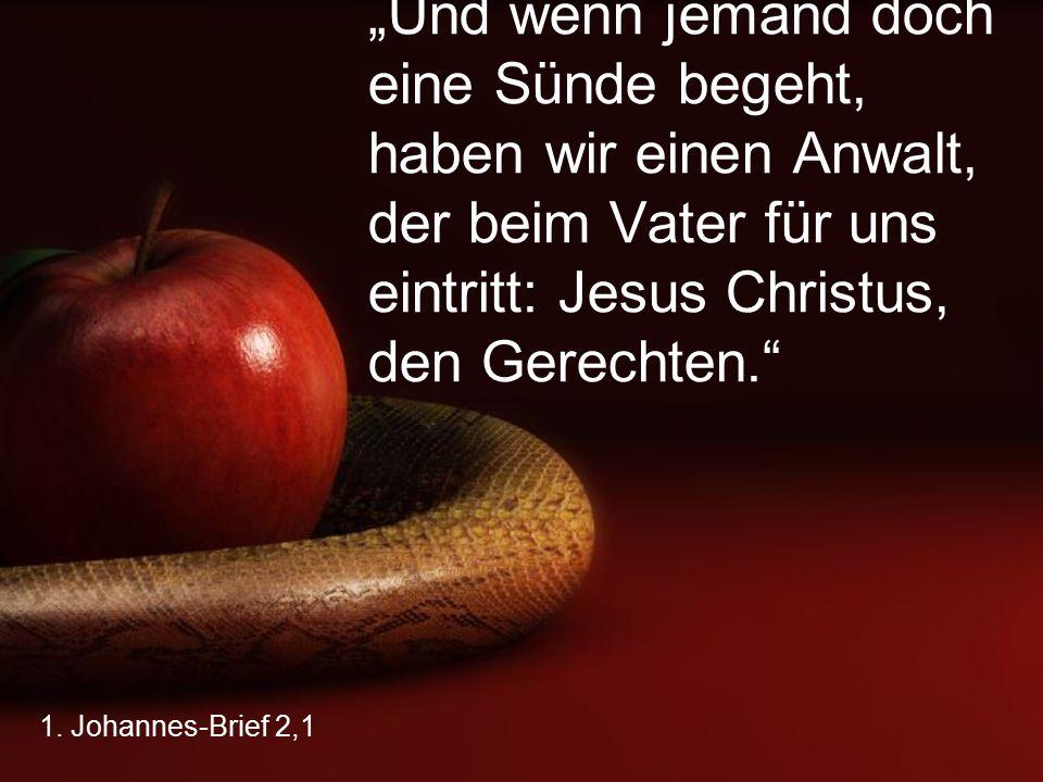 """""""Und wenn jemand doch eine Sünde begeht, haben wir einen Anwalt, der beim Vater für uns eintritt: Jesus Christus, den Gerechten."""